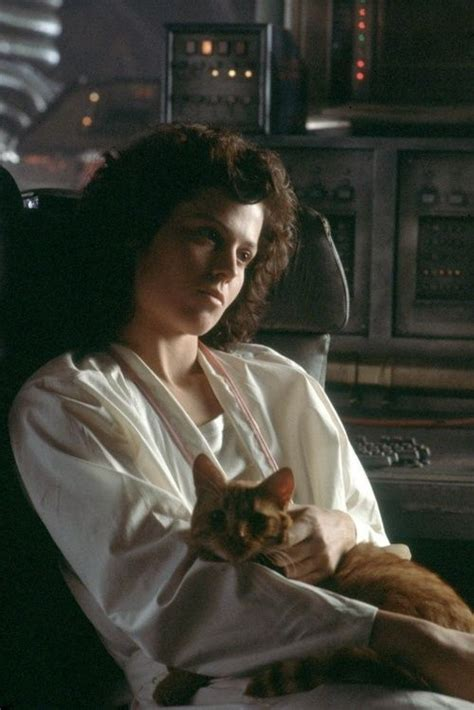 "A recut ""Alien"" trailer features cats, and who knew space"